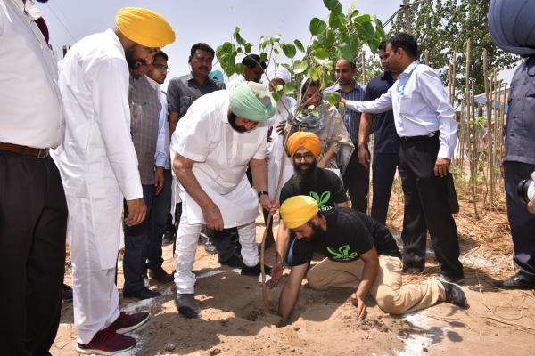 Amarinder talks tough on pollution caused by industry, calls for collective efforts to protect environment
