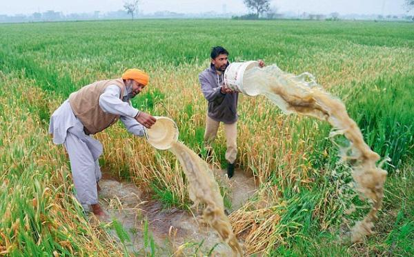 Punjab heading towards worst ever farming crisis since independence:  BJP