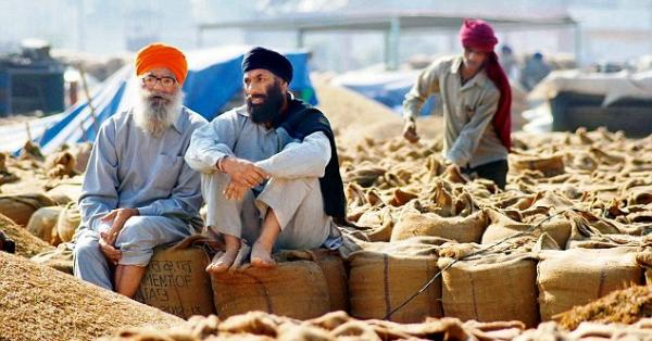 Punjab gets Rs. 28,262.84 cr cash credit for smooth Paddy procurement