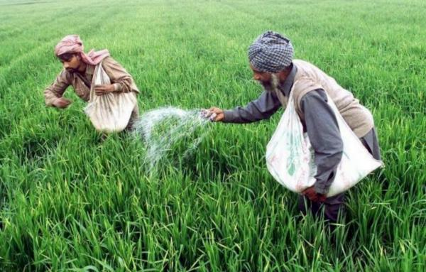Punjab: Environmentally a most freak region