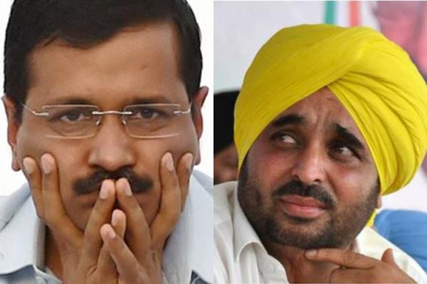 Bhagwant Mann hits out at party high command: Historic blunder, No use finding fault with EVMs