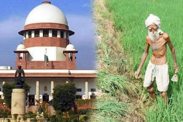 Punjab's farmers get a certificate from Supreme Court