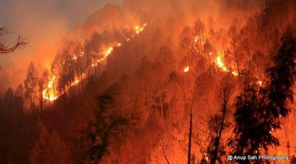 Uttarakhand forest fires: NDRF teams sent to control blaze, PMO assures help